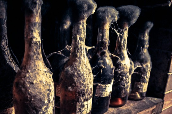 Winnice - pleśń na butelkach wina