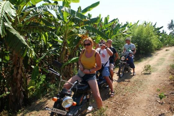 Bananowe lasy w Hampi