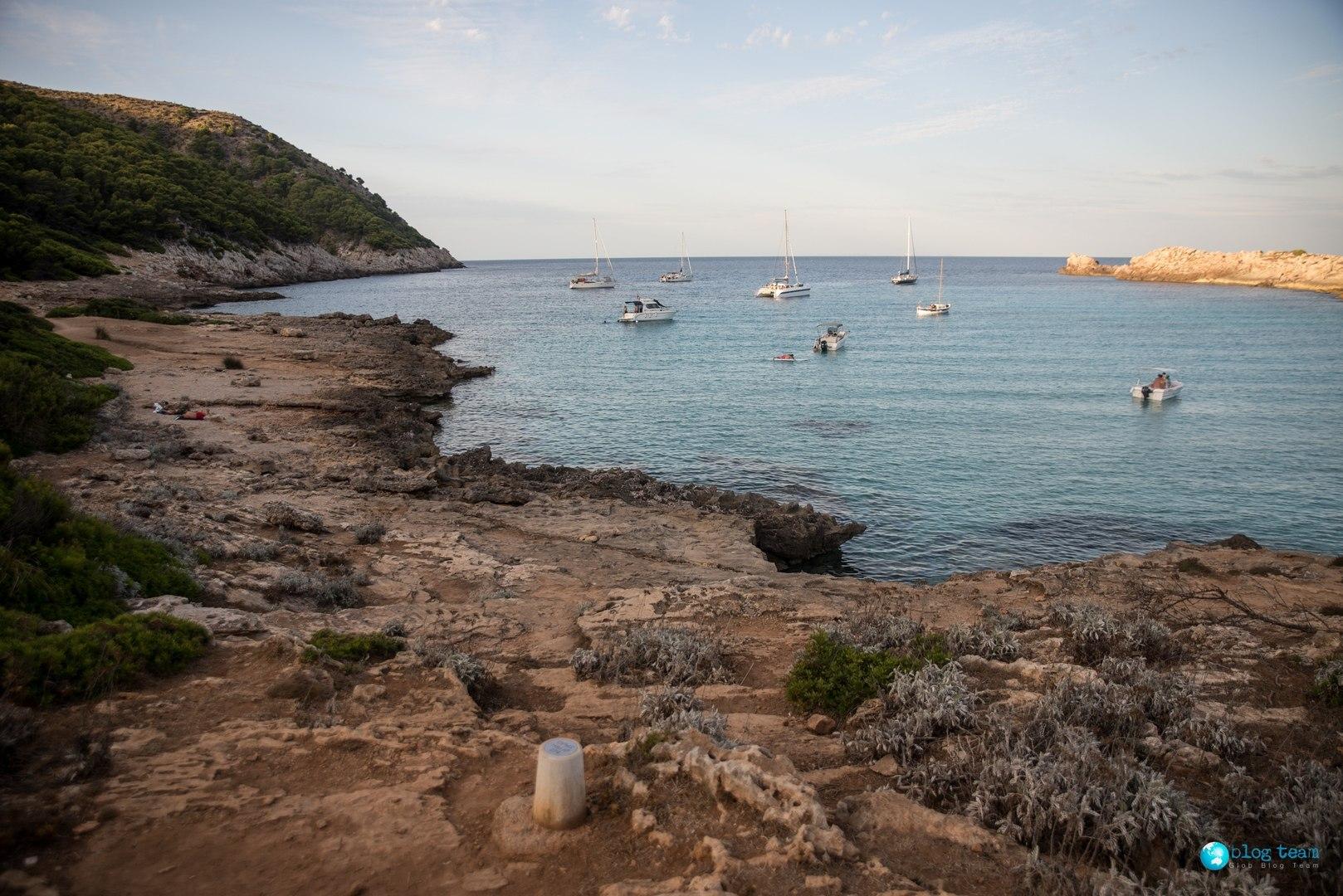 Spanie na dziko na Majorce, okolice Cala Agulla