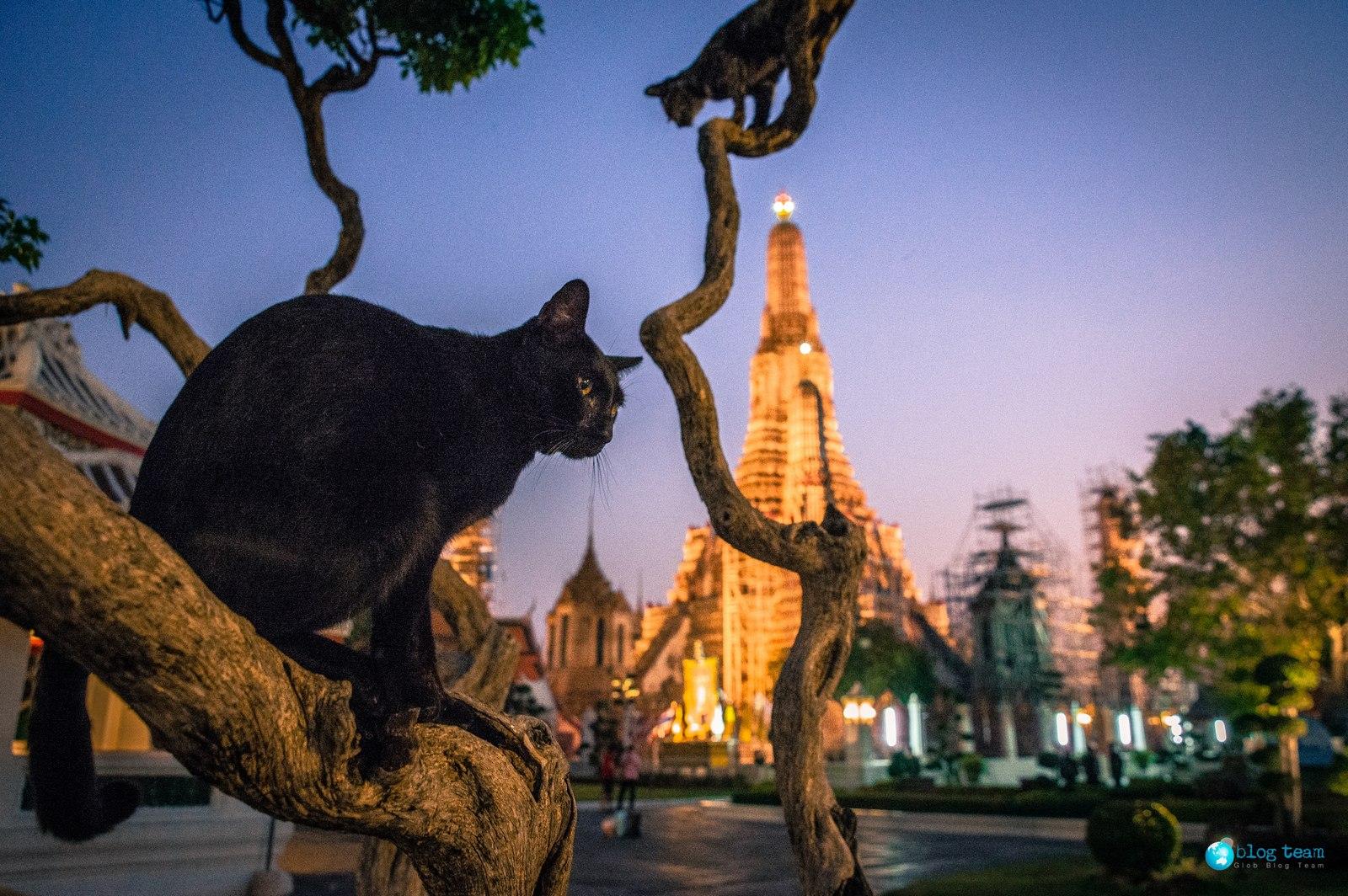 Świątynia Świtu w Bangkoku