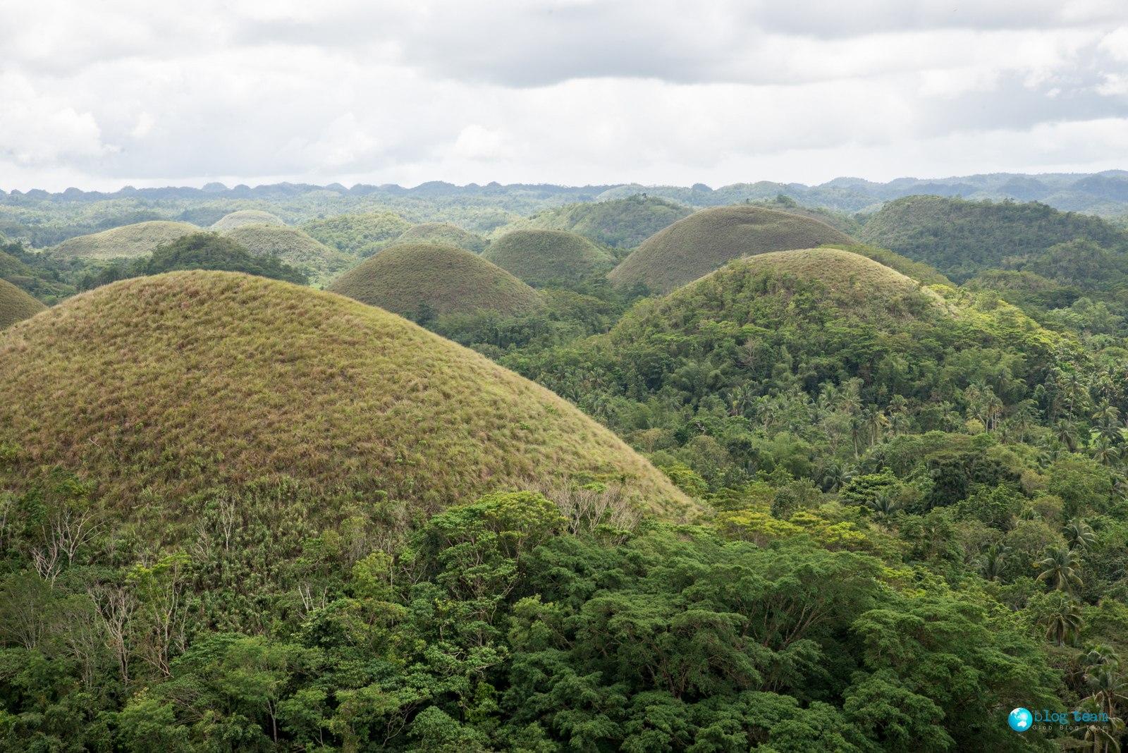 Czekoladowe Wzgórza - Bohol  The Chocolate Hills