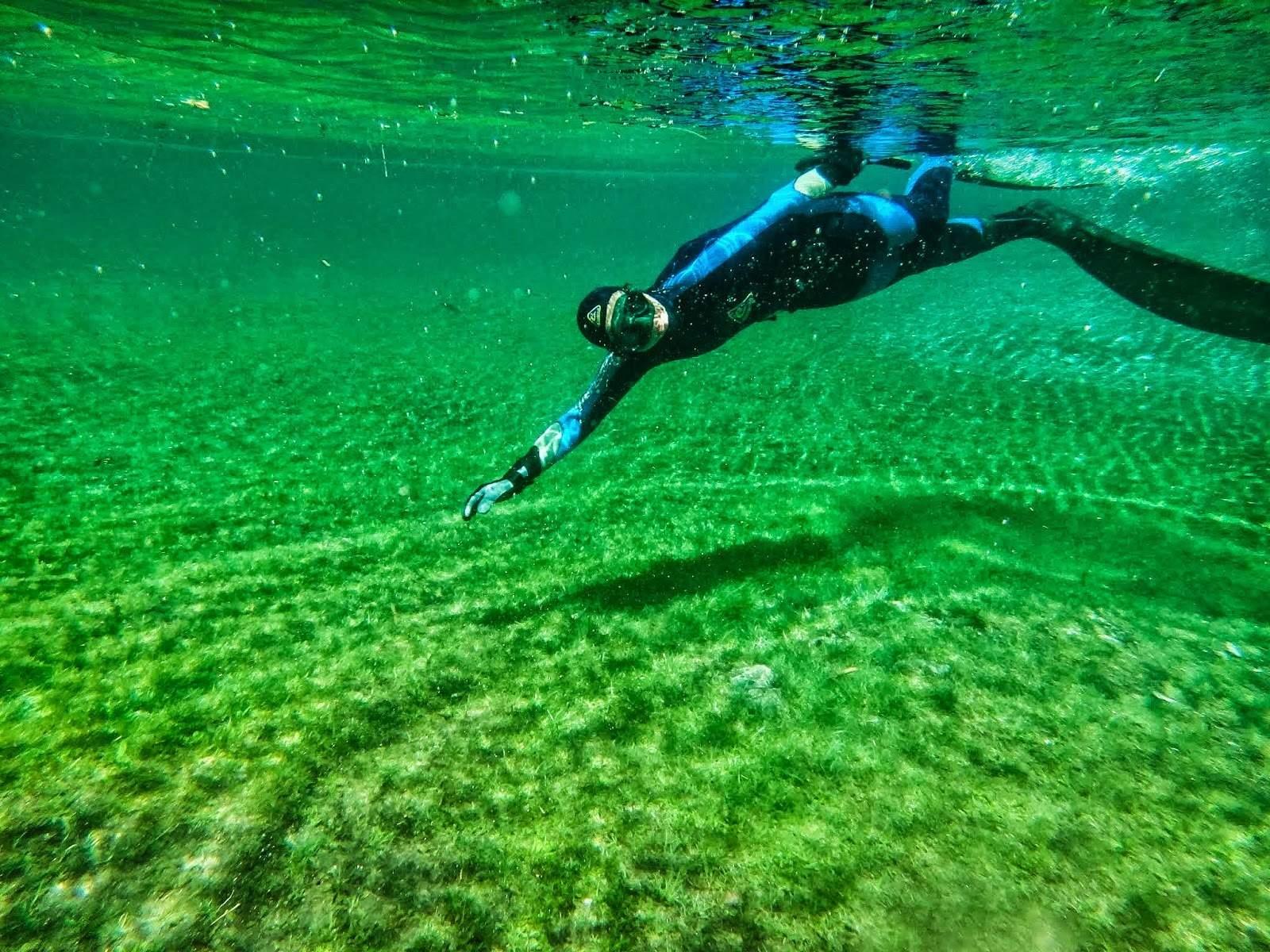 Gruner See Freediving fot. Wirginia Kotkowska (Vivi)