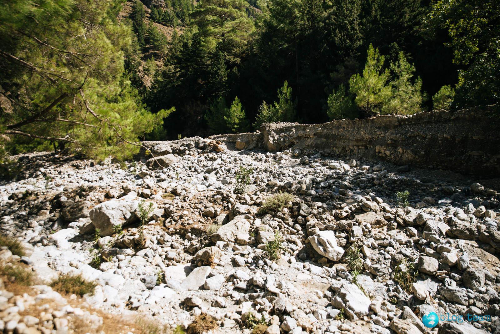 Koryto rzeki w wąwozie Samaria