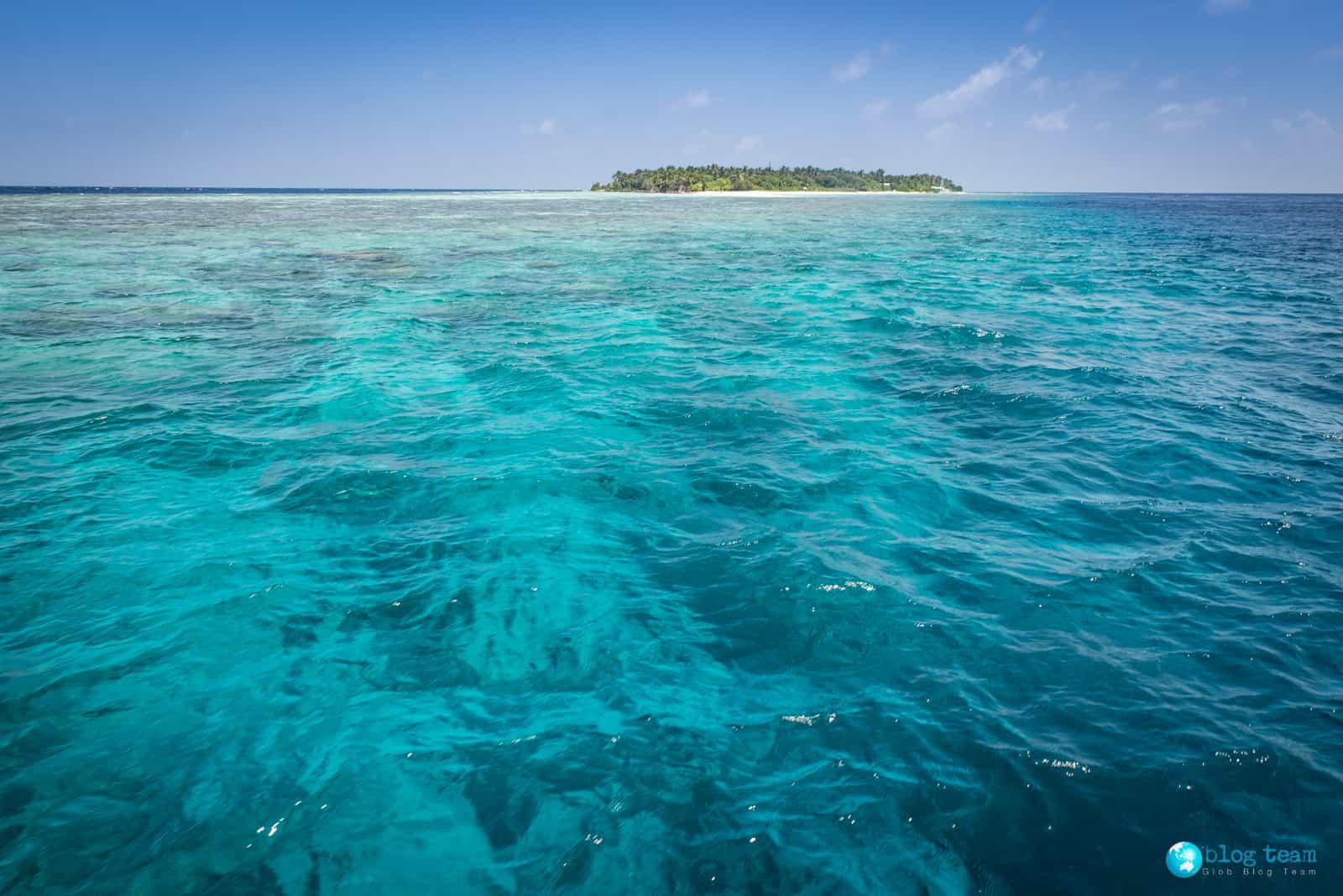 Snorekling z łodzi - Malediwy okolice Omadhoo